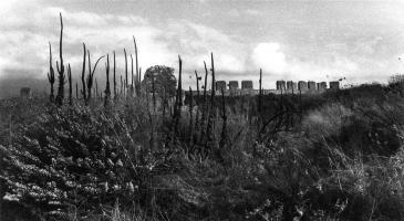 Erieta Attali: Memorial Landscapes (1993) / Εριέτα Αττάλη, Επιμνημόσυνα Τοπία (1993)