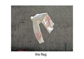 John Stathatos: A Visual Primer of the World: the flag