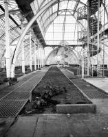 John Stathatos: Arboretum / Γιάννης Σταθάτος: Arboretum
