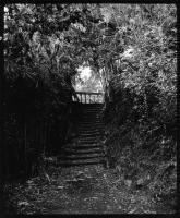 John Stathatos: The Gardens of the Hesperides / Γιάννης Σταθάτος: Οι κήποι των Εσπερίδων (1993)