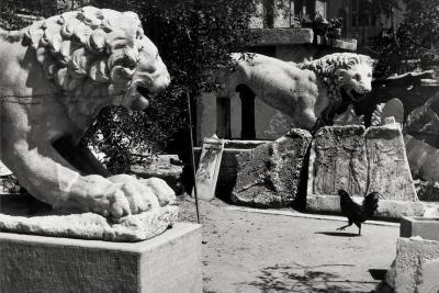 Φωτοφράκτης: Οι φωτογραφίες του Ανδρέα Εμπειρίκου